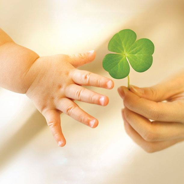 Child's hand reaching for a clover